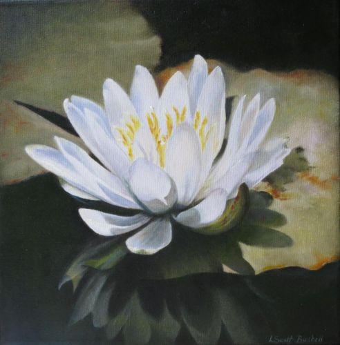 Louise Scott-Bushell